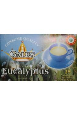 Tisane d'eucaliptus