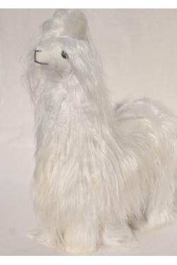 Llama loca - Lama fou